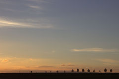 Заход солнца над деревьями Стоковое Изображение