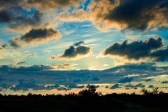 Заход солнца над лесом Стоковые Изображения