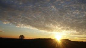 Заход солнца над лесом Heartswood Стоковая Фотография RF