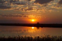 Заход солнца над запрудой Стоковые Изображения RF
