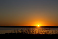Заход солнца на заливе с ветвями пляжа силуэта стоковое фото rf