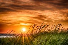 Заход солнца на заливе Стоковые Изображения