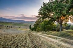 Заход солнца над землей Тосканы Стоковая Фотография RF