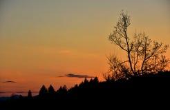 Заход солнца над землей Стоковое Изображение
