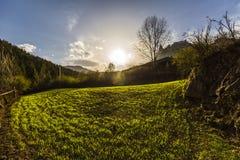 Заход солнца над зеленым полем стоковые фотографии rf