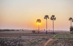 Заход солнца на зоне за полями Kiling, Пномпень, Камбодже Стоковое Фото