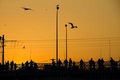 Заход солнца над мостом Galata в Стамбуле, Турции Стоковое Изображение RF