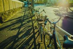 Заход солнца на парковать велосипедов улицы близрасположенный стоковые фотографии rf