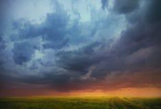 Заход солнца над полем стоковые фото