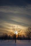 Заход солнца над полем. Стоковая Фотография