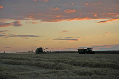 Заход солнца на поле Стоковые Фотографии RF