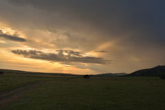 Заход солнца на поле стоковая фотография rf