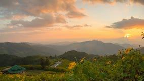 Заход солнца на поле Doi Mae U-kho Khun Yuam схвата Bua, tbailand стоковое изображение rf