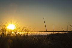 Заход солнца на полуострове Darss, Германии Стоковые Изображения RF