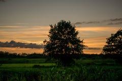Заход солнца над полями стоковые изображения rf