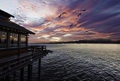 Заход солнца на причале Stearns Стоковые Фото