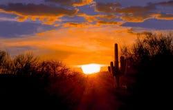 Заход солнца на пустыне Аризоны Стоковое Изображение RF