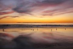 Заход солнца на пляже Калифорнии Ньюпорта с островом santa Каталины в предпосылке Стоковые Изображения