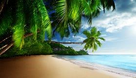 Заход солнца на пляже Anse Takamaka острова Mahe стоковые изображения