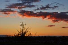 Заход солнца на пляже Vadum в Salling, Дании - серии Стоковая Фотография RF