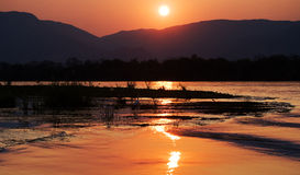 Заход солнца на Реке Замбези вышесказанного Граница Замбии и Зимбабве Стоковое Изображение RF