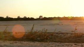 Заход солнца на реке акции видеоматериалы