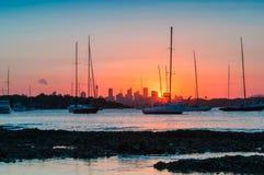 Заход солнца на Сиднее Стоковое Фото