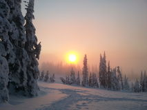 Заход солнца над снегом Стоковые Изображения
