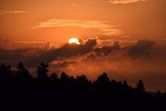 Заход солнца над сосновым лесом, красивое покрашенное небо Стоковое Изображение