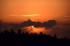 Заход солнца над сосновым лесом, красивое покрашенное небо Стоковые Фото