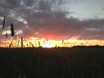 Заход солнца на стороне страны Стоковые Изображения RF
