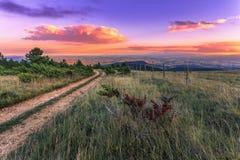 Заход солнца над терниями Стоковая Фотография RF