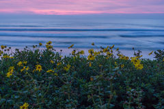Заход солнца над Тихим океан пляжем Стоковые Фотографии RF