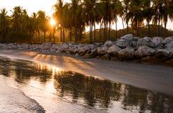 Заход солнца на тропической береговой линии Стоковое Фото