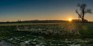 Заход солнца на лугах стоковое фото