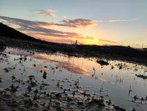 Заход солнца над лужицей Стоковое Изображение