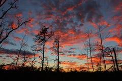 Заход солнца на ущелье Red River Стоковые Фото
