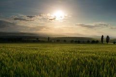Заход солнца над холмами стоковое фото rf