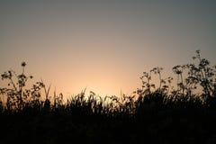 Заход солнца на dike в Vianen Стоковые Фото