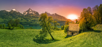 Заход солнца над glade в горах Альпов стоковая фотография rf