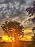 Заход солнца на Jimbour Австралии Стоковые Фотографии RF
