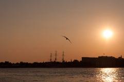 Заход солнца над Neva Rive Стоковые Фотографии RF