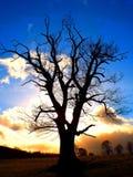 Заход солнца над skirrid Стоковое Фото