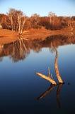 Заход солнца озером Стоковые Изображения