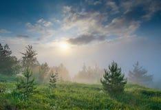 Заход солнца долины fogy Стоковое фото RF