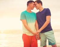 Заход солнца пар гомосексуалиста наблюдая стоковые изображения rf