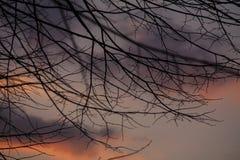 Заход солнца падения Стоковое Изображение RF