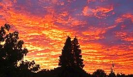 Заход солнца поздно вечером с красивыми покрашенными облаками Стоковые Изображения RF