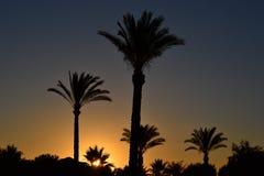 Заход солнца после полудня на пляже Стоковое Изображение RF
