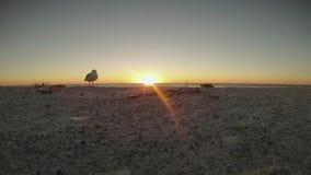 Заход солнца промежутка времени на пляже акции видеоматериалы
